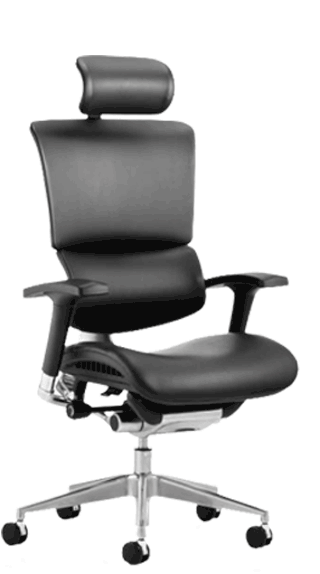 Ergo Dynamic Leather with Headrest click for larger image