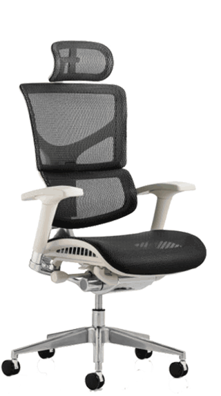Ergo Dynamic Full Mesh On Grey Base with Headrest click for larger image